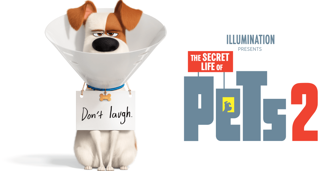 REVIEW: 'Secret Life of Pets' sequel is better suited for the small screen