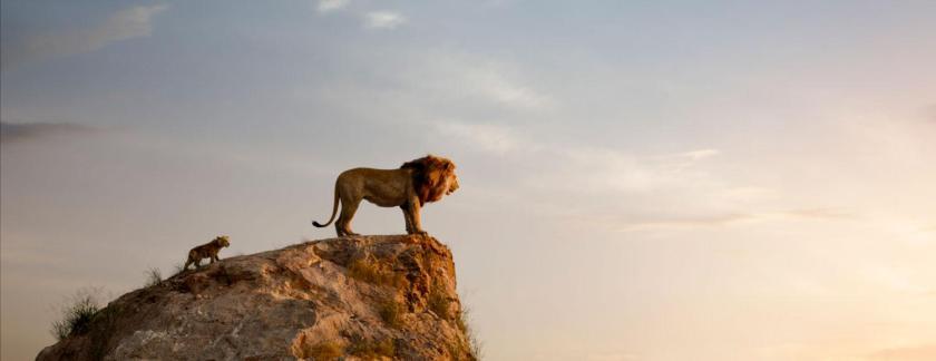 LionKingRanking
