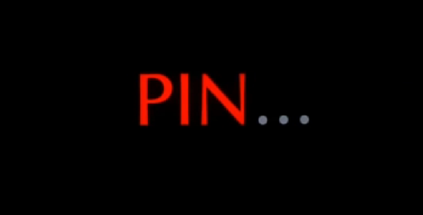 PinFeature